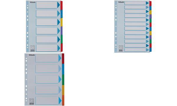 Esselte Karton-Register, blanko, A4, 12-teilig, mehrfarbig