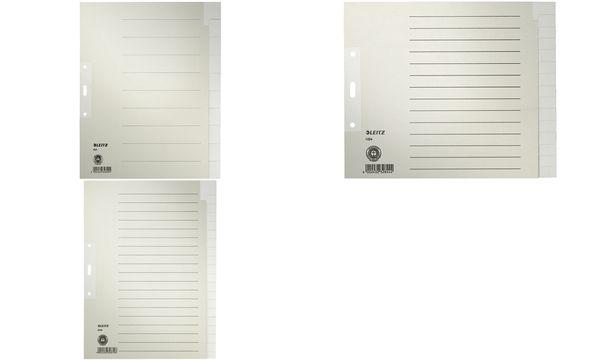 LEITZ Tauenpapier-Register, blanko, A4, 20-teilig, grau