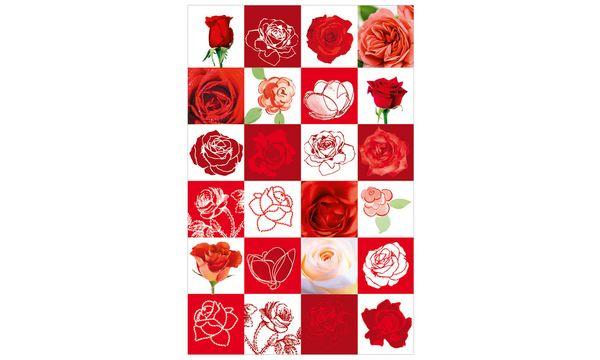 SUSY CARD Grußkarte - Allgemein Rosen