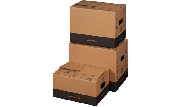 "braun #10xsmartboxpro Umzugskarton /""CARGO-BOX X/"""
