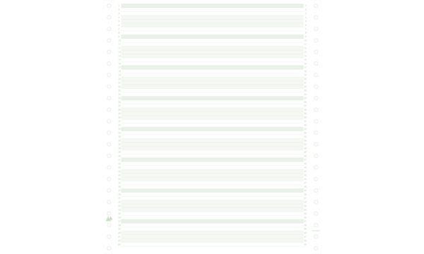 EXACOMPTA Computerpapier endlos, 240 mm x 11 (27,94 cm)