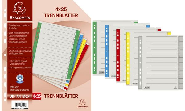 EXACOMPTA Trennblätter, DIN A4 Überbreite, grau