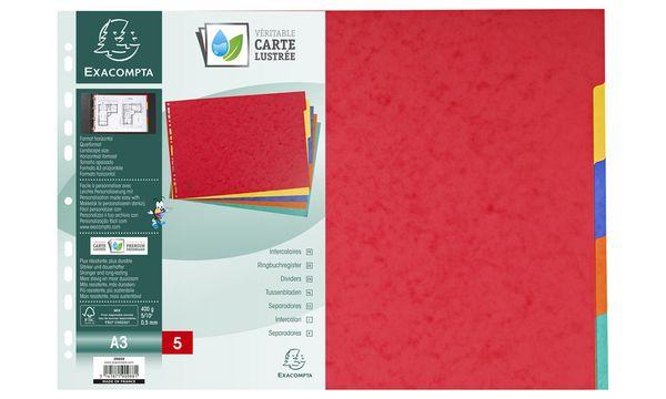 EXACOMPTA Karton-Register, blanko, DIN A3 quer, 5-teilig