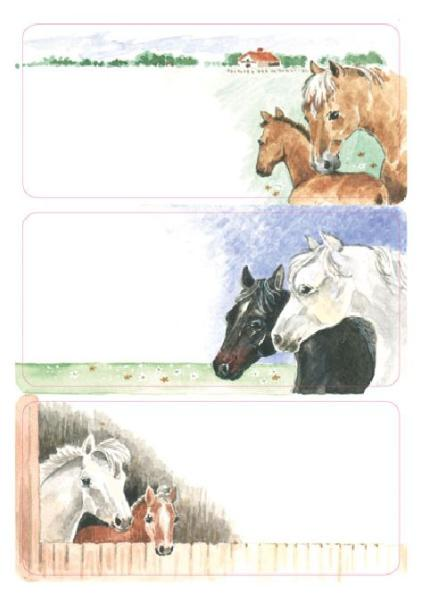 HERMA Buchetiketten Pferde, 76 x 35 mm