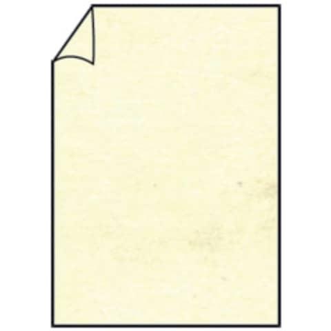 COLORETTI Briefbogen A4 80g 10ST chamois
