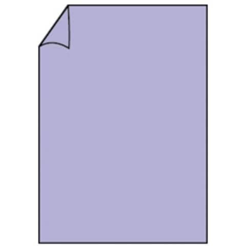 COLORETTI Briefbogen A4 165g 10ST lavendel
