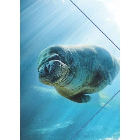 RNK Zeichenmappe A4 Unter Wasser