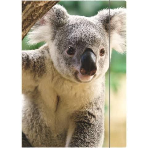RNK Zeichenmappe A4 Koala