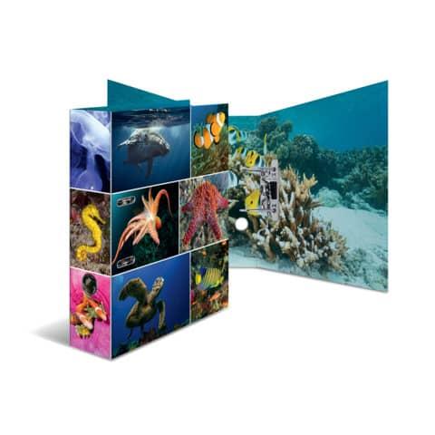 HERMA Motivordner Animals, DIN A4, Meerestiere