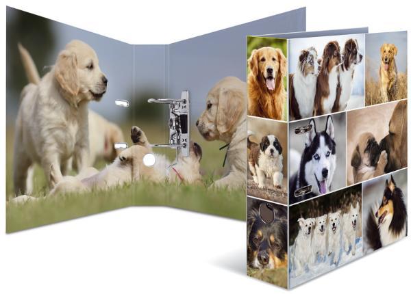 HERMA Ordner Tiere A4 Hunde