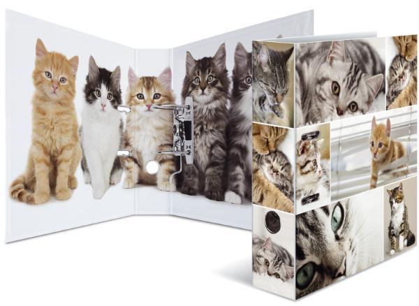 HERMA Ordner Tiere A4 Katzen