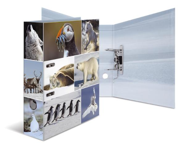 HERMA Ordner Tiere A4 Eiswelten
