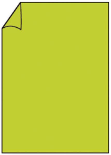 Briefbogen A4 80g 10ST hgrün