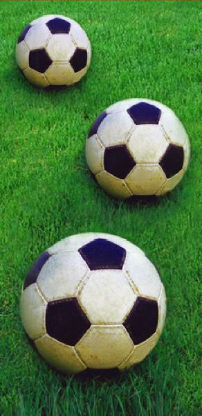 #6xTaschentuch 4 lagig Fussball
