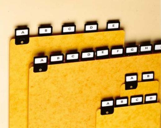 REXEL alphabetische Kartei-Register, DIN A4 hoch