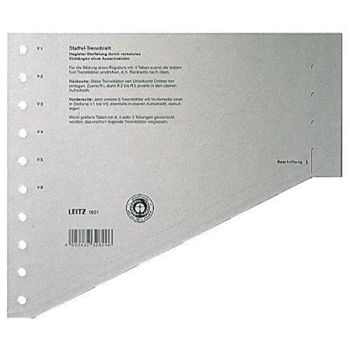 LEITZ Staffel-Trennblätter, DIN A4 Überbreite, grau