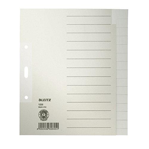 LEITZ Tauenpapier-Register, blanko, A5, 15-teilig, grau