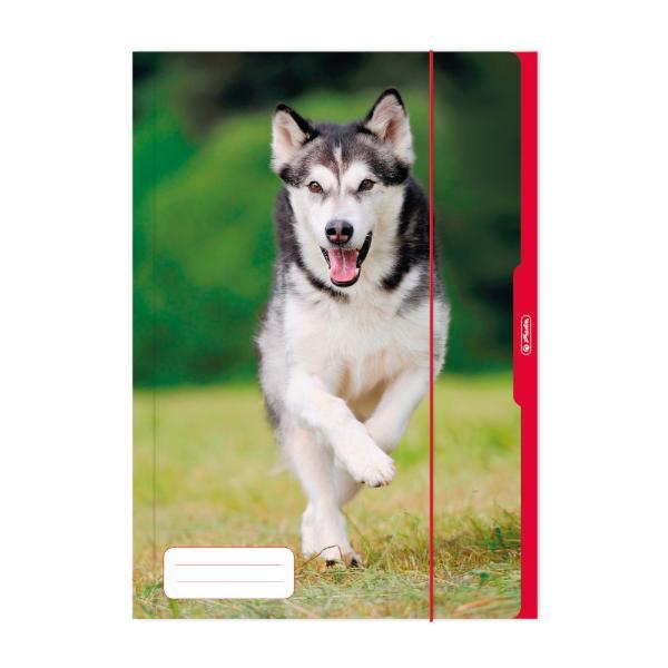 herlitz Zeichnungsmappe Hund, DIN A3