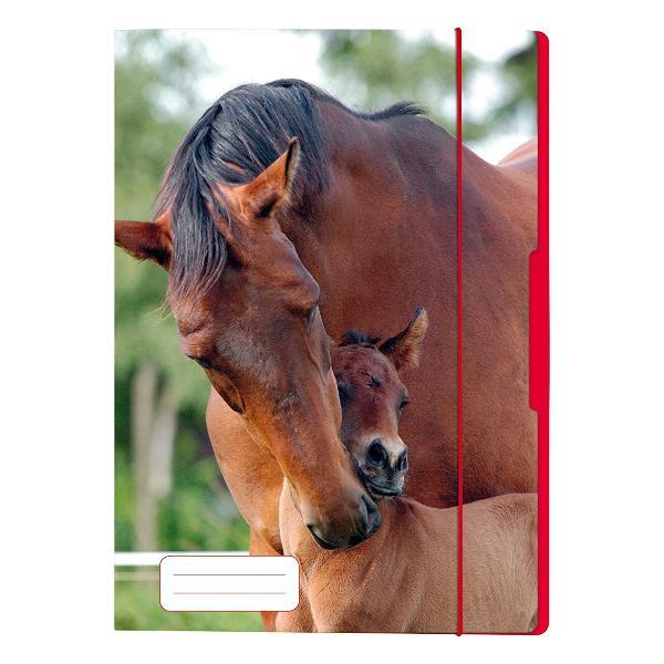 herlitz Zeichnungsmappe Pferd, DIN A4