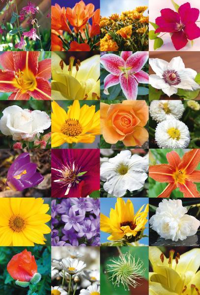 HERMA Sticker DECOR Blumenreich