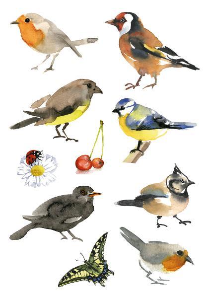 HERMA Sticker DECOR Aquarell Vögel