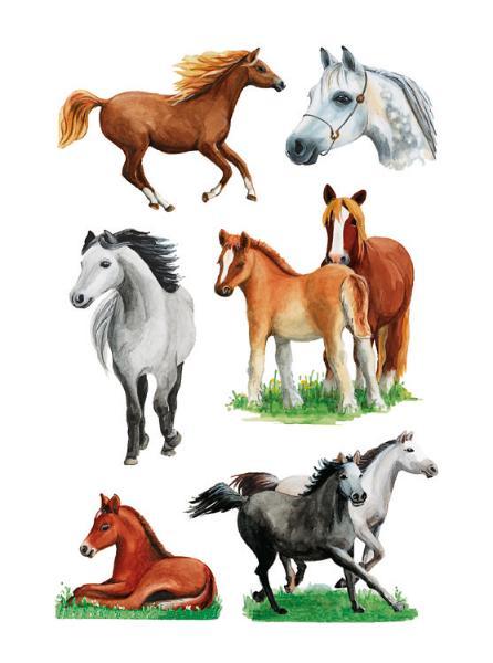 HERMA Sticker DECOR Pferderassen