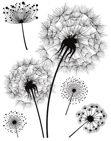 HERMA Fensterbild DECOR Pusteblume, DIN A4, schwarz/weiß
