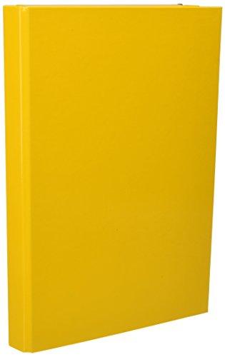 PAGNA Heftbox Basic Colours, DIN A4, gelb