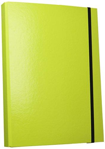 PAGNA Heftbox Trend Colours, DIN A4, lindgrün