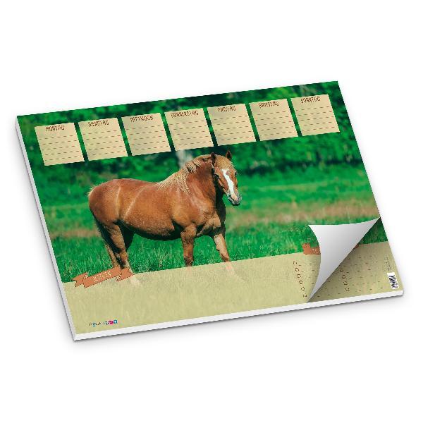 itenga Schreibtischunterlage Pferd DIN A3 50 Blatt