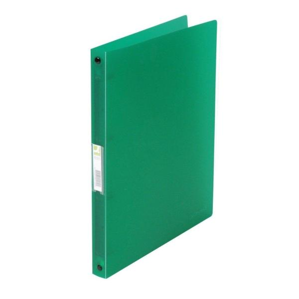 Ringmappe transluzent grün