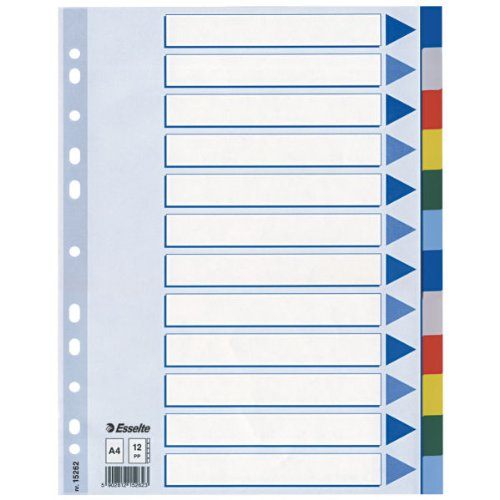 Esselte Kunststoff-Register, blanko, A4, PP, 12-teilig